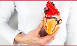 الحمية الغذائية – للحد من ارتفاع ضغط الدم