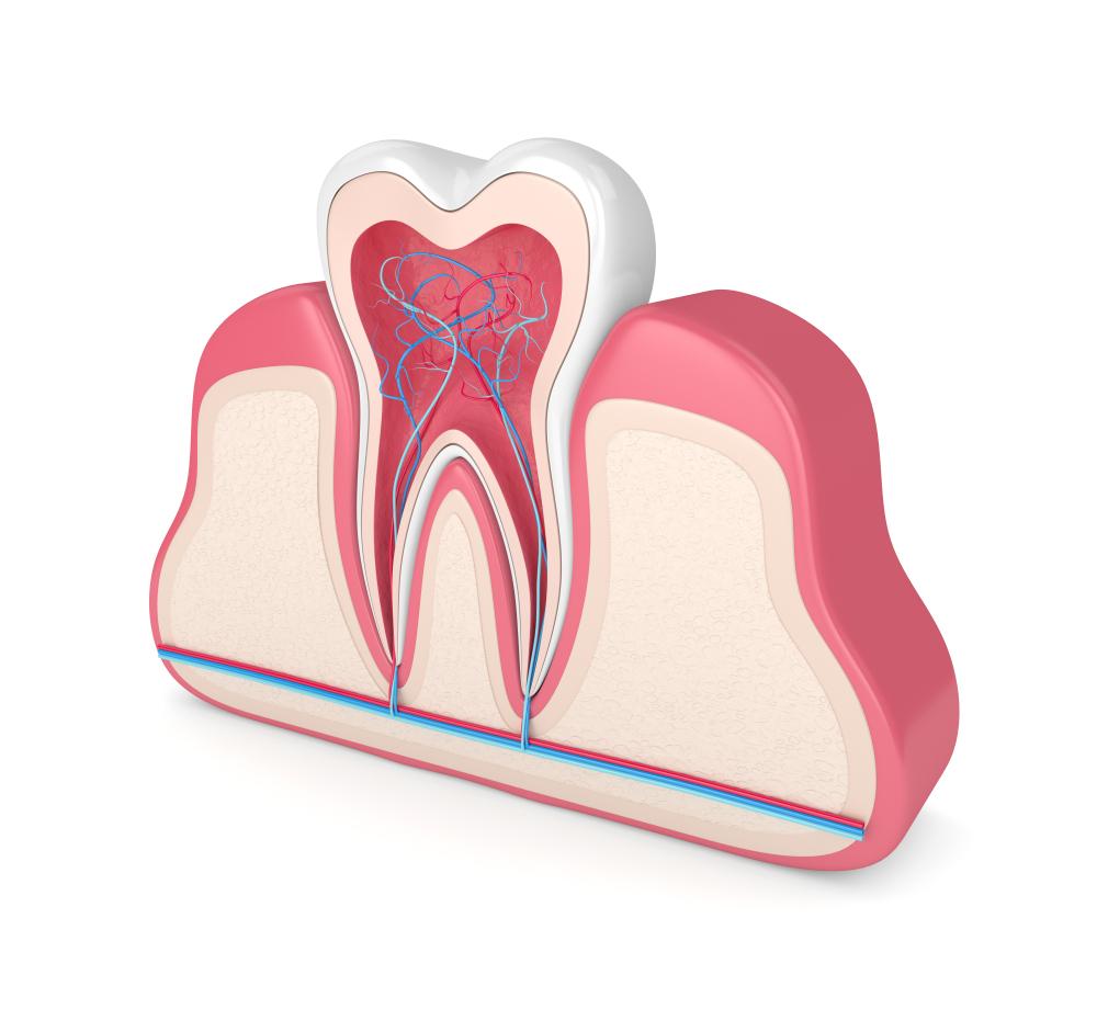 علاج الجذور وعصب الأسنان